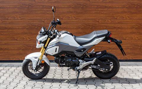 001 - Honda MSX